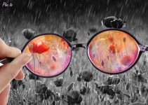 Looking Through Rose-Tinted Glasses