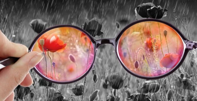 Looking Through Rose-Tinted Glasses - Search for Hope